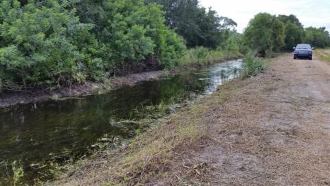 Ditch clearing after Hurricane Irma