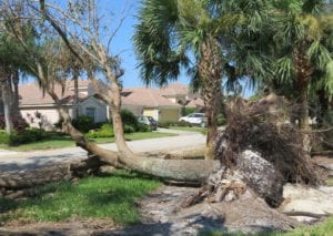 2017-09-17 Hurricane Irma damage