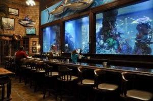 bar and aquarium