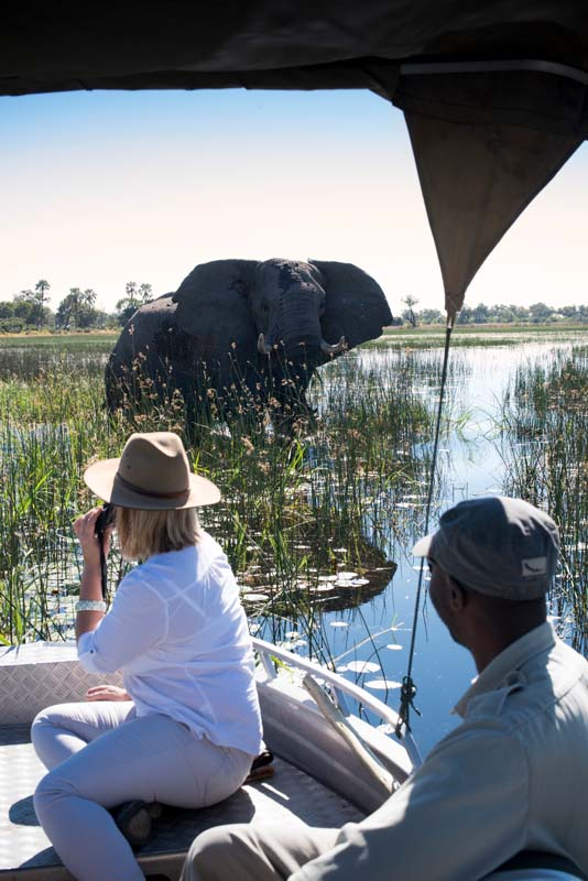 Estero safari trip