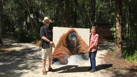 Estero artist shows his ape paintings
