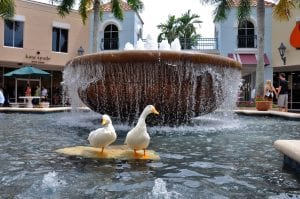Miromar Outlets Ducks